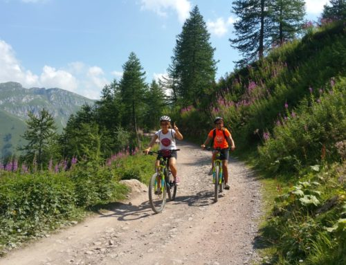 Thursday 9 July the excursion on the Via del Sale starts again.